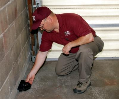 Mice Exterminator Glen Rock PA 3